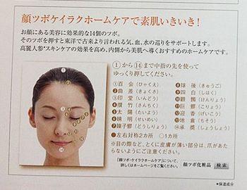 顔ツボのみパンフ.jpg
