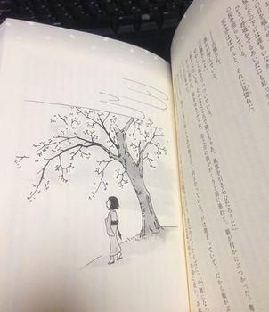 sakurahousara_naka.jpg
